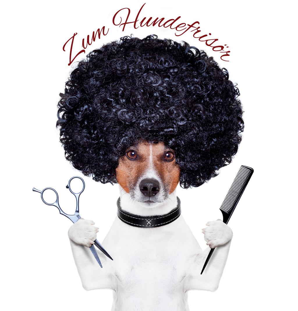 Hundefriseur für Neusatdt / Aisch und Herzogenaurach