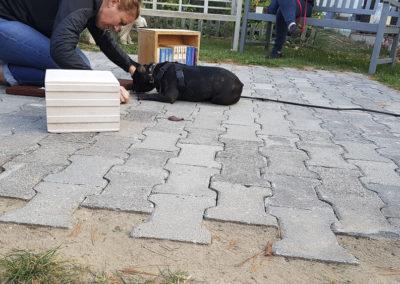 schnueffelstueck_canincare_02